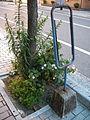 古いバス停の時刻表 (4717061912).jpg