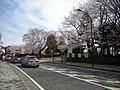横山公園前 - panoramio.jpg