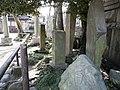 白鬚神社 - panoramio (33).jpg