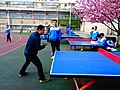 雁塔 陕师大附中分校在打乒乓球 02.jpg