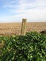 -2019-02-17 Drain marker post on a footpath near Ostend.JPG