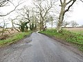 -2021-01-04 Looking north along Corner Common Road, Honing, Norfolk.jpg