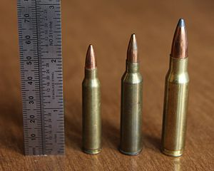 .225 Winchester - .225 Winchester (center) with .223 Rem (left) and .308 Win (right).