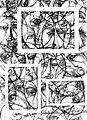 07. Love parade IV, 1999. tus, monotipia, 30x42 cm, Hejce, a.jpg