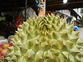 07302jfBlack ants eating Durians in the Philippinesfvf 16.jpg