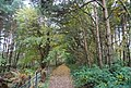 1066 Country Walk, Saxon Wood - geograph.org.uk - 2186825.jpg