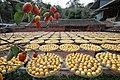 11.10 副總統「金漢柿餅教育農園」 (50585434543).jpg