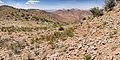 1117 Mountain - Flickr - aspidoscelis (1).jpg