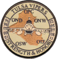 125th Expeditionary Fighter Squadron Operation - gaggle patch.png