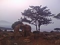 13CESAEREE today TIPAZA .The ancient Roman city in Algeria.jpg