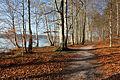 14-12-28-Werbellinsee-RalfR-DSCF6293-26.jpg