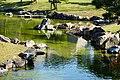 141115 Ako Castle Ako Hyogo pref Japan18bs3.jpg