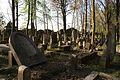1490viki Cmentarz żydowski przy ul. Lotniczej. Foto Barbara Maliszewska.jpg