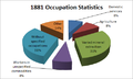 1881 Occupation statistics.png