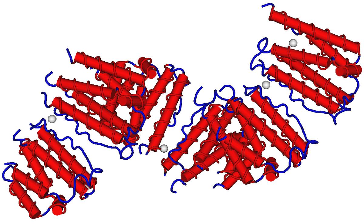 Interferone – Wikipedia | 1200 x 738 png 516kB