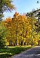 1 Осінь в Гідропарку.jpg