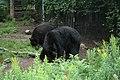 2008-08-12 Moncton Trip (2757999635).jpg