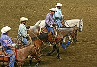 2008 Kentucky State Fair Roping Show (2765926132).jpg