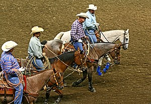 Lasso - Riders carrying modern lassos for competition in team roping.