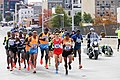 2014 New York City Marathon IMG 1672 (15511869477).jpg