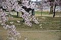 20160403 Himeji-Castle 3331 (26791571536).jpg