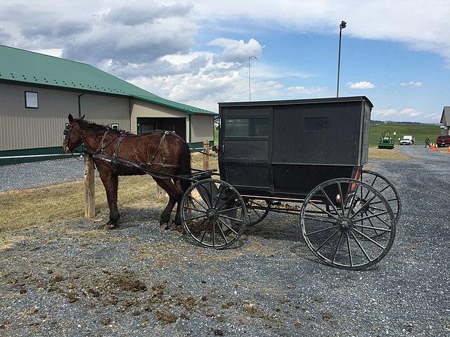 Mennonici- wóz