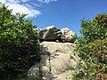 2017-06-21 15 52 33 The summit of Old Rag Mountain within Shenandoah National Park, in Madison County, Virginia.jpg