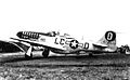 20th Fighter Group P-51.jpg
