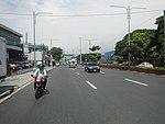 2256Elpidio Quirino Avenue Airport Road NAIA Road 41.jpg
