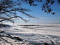 5.04.2012 - panoramio (1).jpg