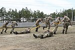 82nd Airborne, 16th Air Assault train for largest bilateral exercise in 20 years 150316-A-DP764-006.jpg