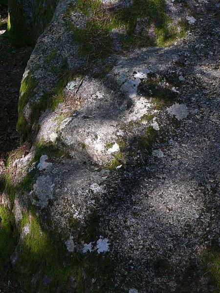 Fichier:9 gradins pierre n°1 détail marches.jpg