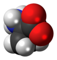 ACC-zwitterion-3D-spacefill.png