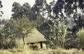 ASC Leiden - van Achterberg Collection - 1 - 083 - Une maison à toit de chaume dans la région de Bamenda - Bamenda, Cameroun - 6-12 février 1997.tif