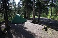 A campsite in Igloo Creek Campground (fc47e8e8-7108-4163-a11f-bb75f9a8e02b).JPG