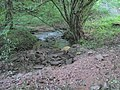 A confluence in Woolpitch Wood - geograph.org.uk - 505047.jpg