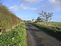 A country road - geograph.org.uk - 278096.jpg