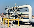 A technician inspects wellhead assembly at the Reserve's West Hackberry site near Lake Charles, LA.jpg
