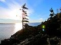 Acadia National Park (8111097838).jpg