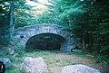 Acadia bridge.jpg