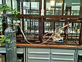 Acetonitrile distillation.jpg