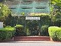 Acharya Jagadish Chandra Bose Indian Botanic Garden - Howrah 2011-03-20 2073.JPG