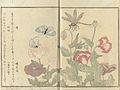 After Kitagawa Utamaro 001.jpg