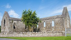 Aghaboe Priory of St. Canice SE 2010 09 02.jpg
