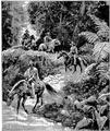 Aimard - Les Chasseurs d'abeilles, 1893, illust page 205.png
