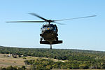 Air Cavalry Warriors hone aerial sabers DVIDS121110.jpg