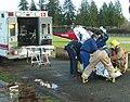Airlift from 26 December 2006 Car Crash - 1.JPG