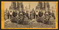 Alaska Ter. - Fort Tongass. Group of Indians, by Muybridge, Eadweard, 1830-1904.png