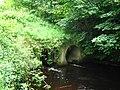 Aldorough Bridge(2) - geograph.org.uk - 863441.jpg