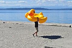 Alki Beach - man with duck float 01.jpg